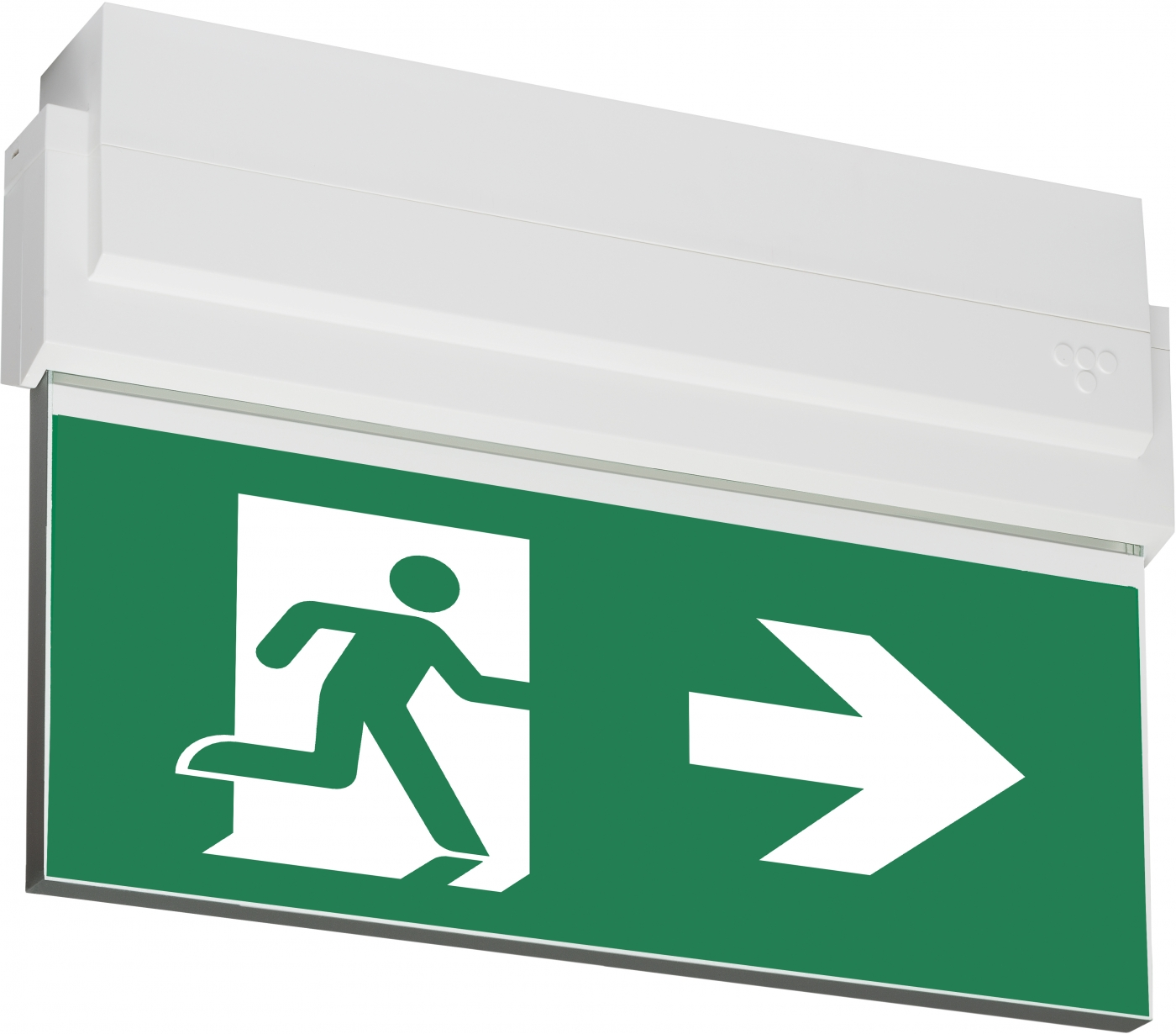 ESC 80 LED Emergency Exit Light Y8051W108